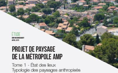 Projet paysages AMP