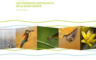 Une stratégie métropolitaine pour la biodiversité